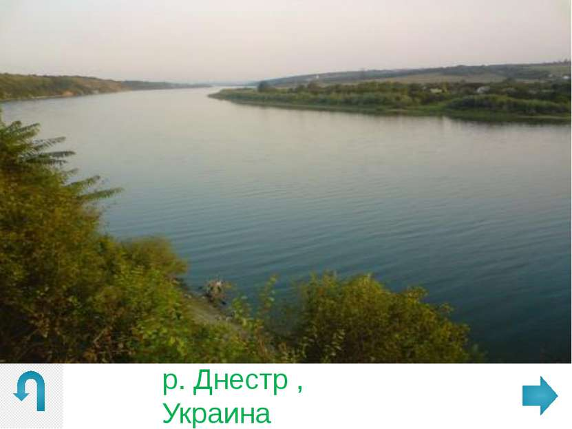 """г. Єнакиево, Донецкая обл. , """"вблизи ДСК """""""