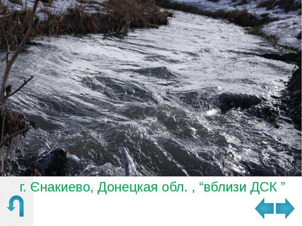"""г. Юнокоммунаровск, Донецкая обл. , ставок """"Дачный"""""""