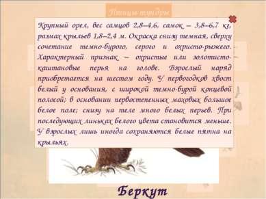 Используемые ресурсы: фон векторный клипарт Превью http://rylik.ru/uploads/po...