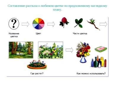 Составление рассказа о любимом цветке по предложенному наглядному плану.