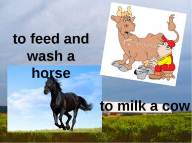 to milk a cow to feed and wash a horse