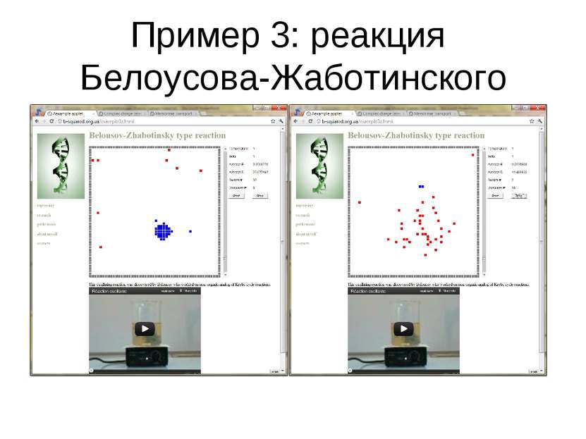 Пример 3: реакция Белоусова-Жаботинского