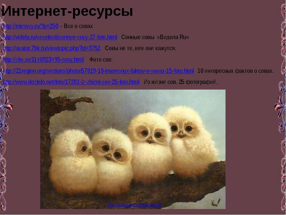 http://mirsovy.ru/?p=250 – Все о совах http://videla.ru/veselosti/sonnye-sovy...