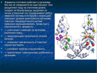 Ферменты постоянно работают в организме: без них не совершается ни один проце...