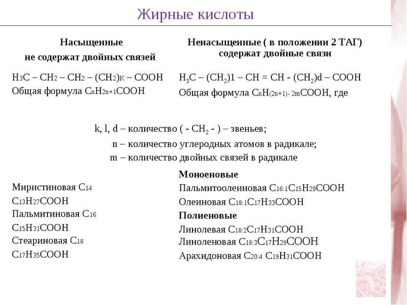 Жирные кислоты Насыщенные не содержат двойных связей Ненасыщенные ( в положен...