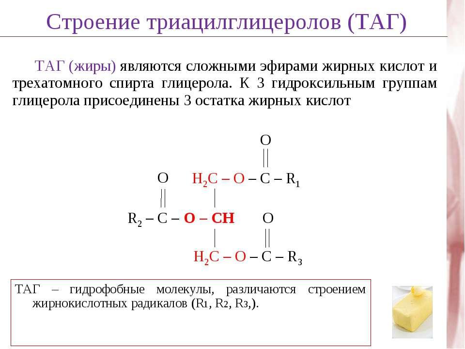 ТАГ (жиры) являются сложными эфирами жирных кислот и трехатомного спирта глиц...