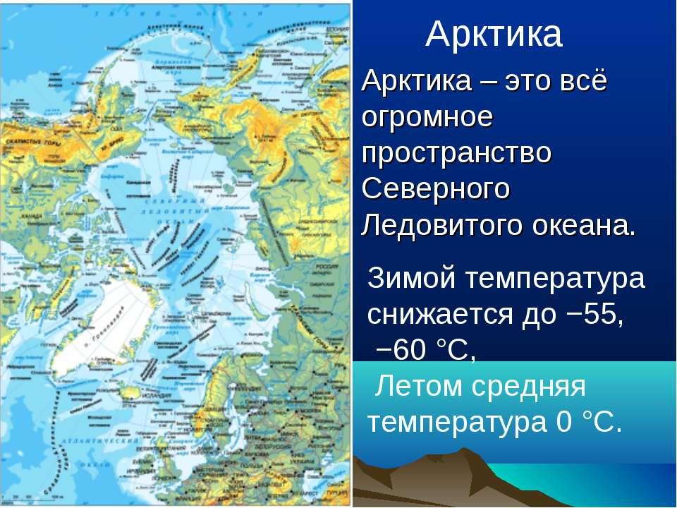 Арктика Арктика – это всё огромное пространство Северного Ледовитого океана. ...