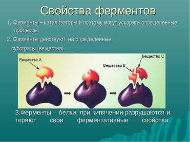 3.Ферменты – белки, при кипячении разрушаются и теряют свои ферментативные св...