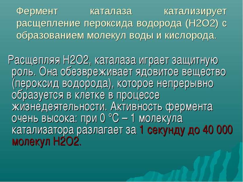 Фермент каталаза катализирует расщепление пероксида водорода (Н2О2) с образов...
