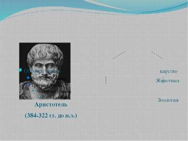 Аристотель (384-322 гг. до н.э.) Живые существа  царство царство Животных Ра...
