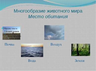 Многообразие животного мира Место обитания Почва Воздух Вода Земля