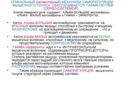 СПИНАЛЬНЫЙ (сегментарный) МЕХАНИЗМ САМОРЕГУЛЯЦИИ МЫШЕЧНОГО ТОНУСА ОБЕСПЕЧИВАЕ...