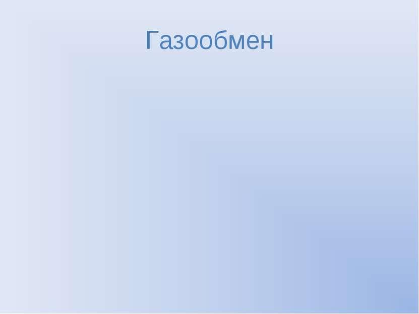 Газообмен