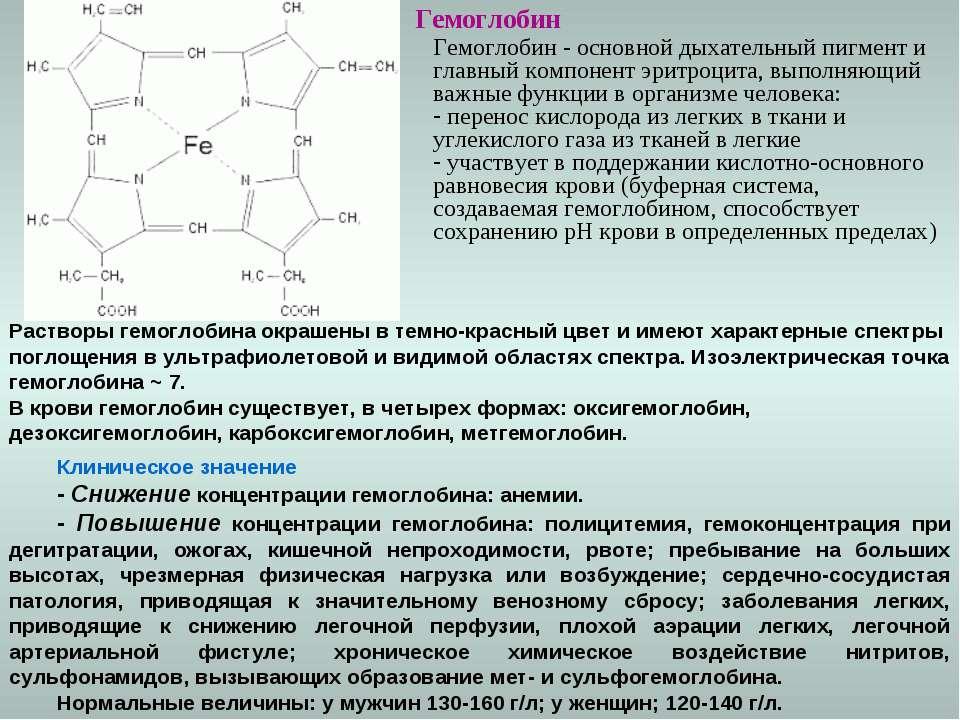 Гемоглобин Гемоглобин - основной дыхательный пигмент и главный компонент эрит...