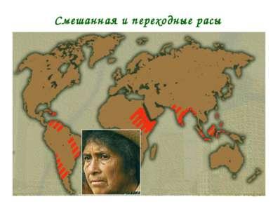 * Смешанная и переходные расы