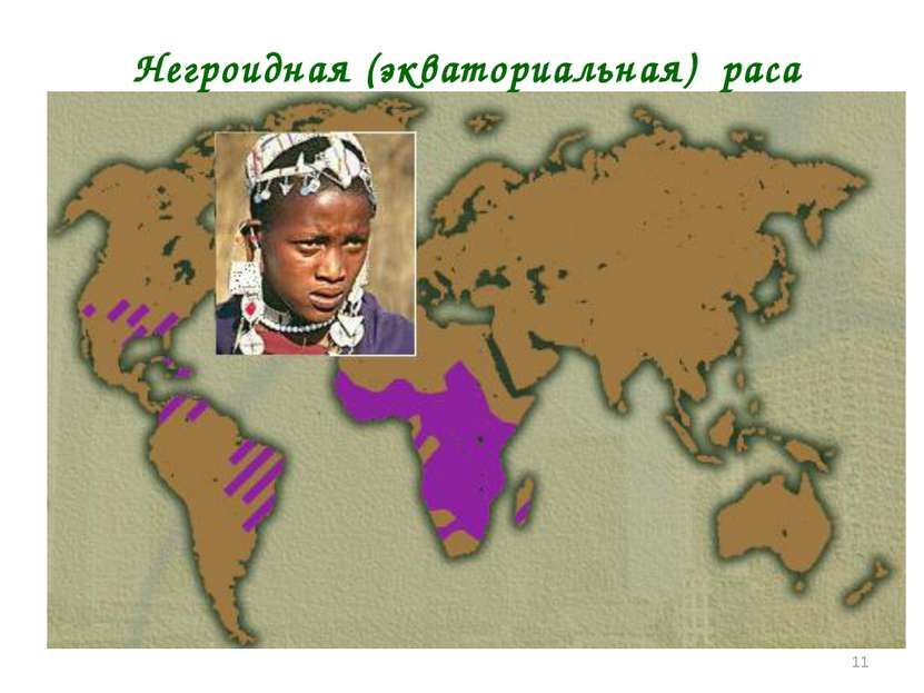* Негроидная (экваториальная) раса