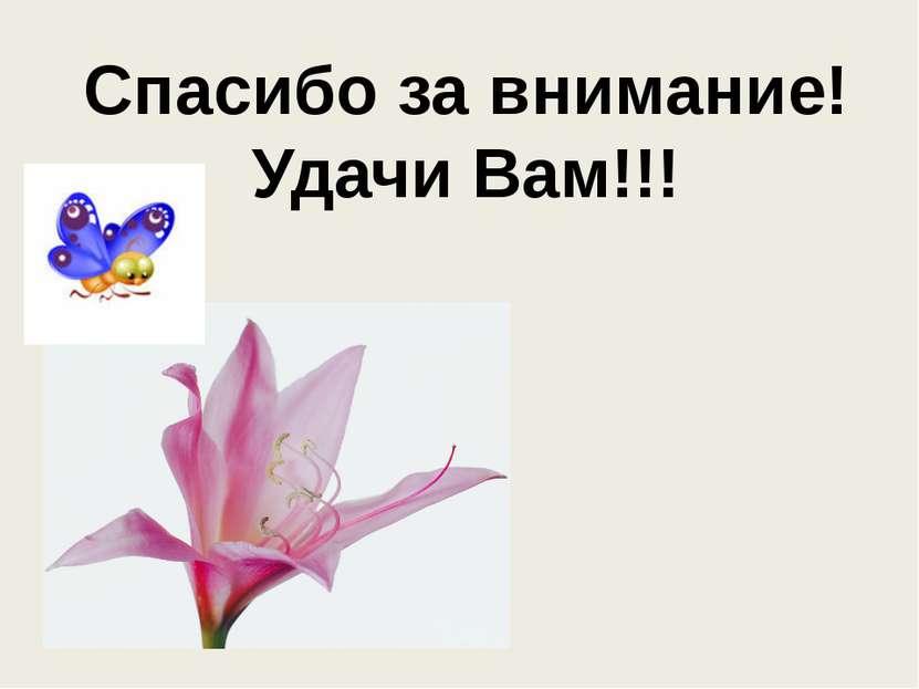 Спасибо за внимание! Удачи Вам!!!