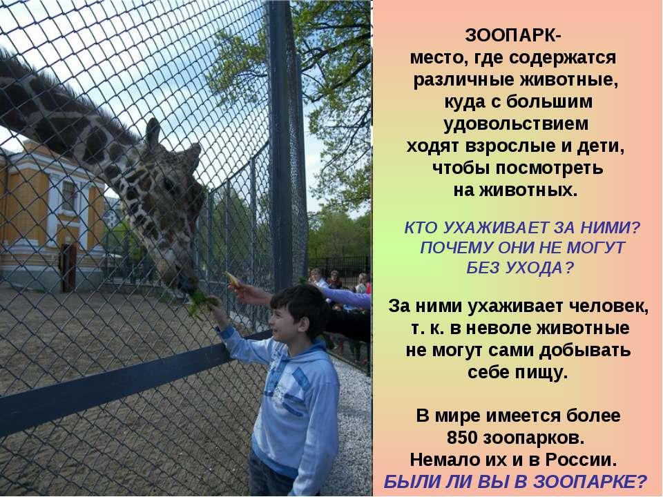 За ними ухаживает человек, т. к. в неволе животные не могут сами добывать себ...
