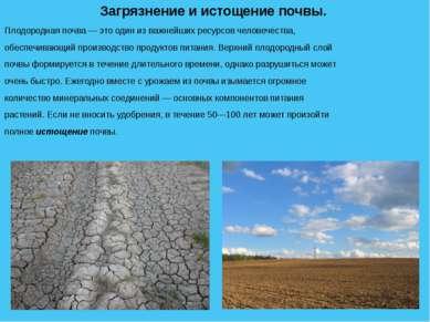 Загрязнение и истощение почвы. Плодородная почва — это один из важнейших ресу...
