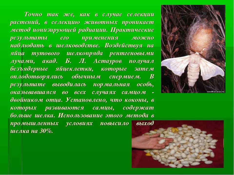 Точно так же, как в случае селекции растений, в селекцию животных проникает м...