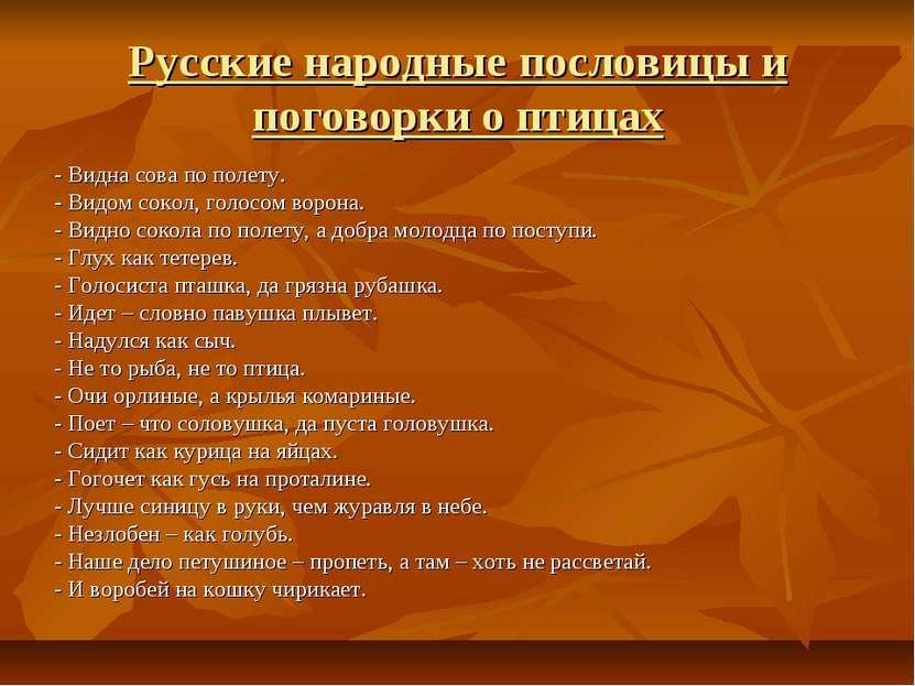 Русские народные пословицы и поговорки о птицах - Видна сова по полету. - Вид...