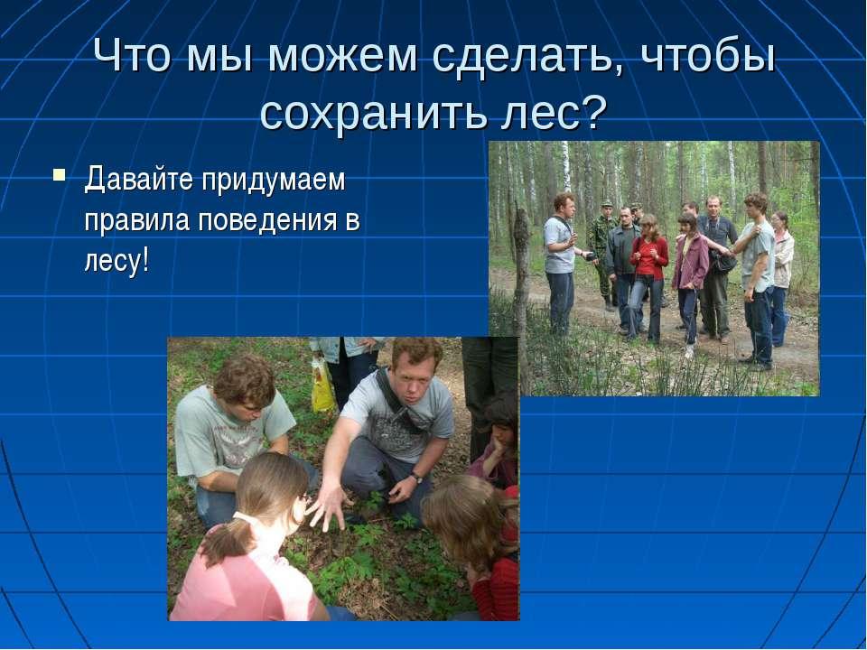 Что мы можем сделать, чтобы сохранить лес? Давайте придумаем правила поведени...
