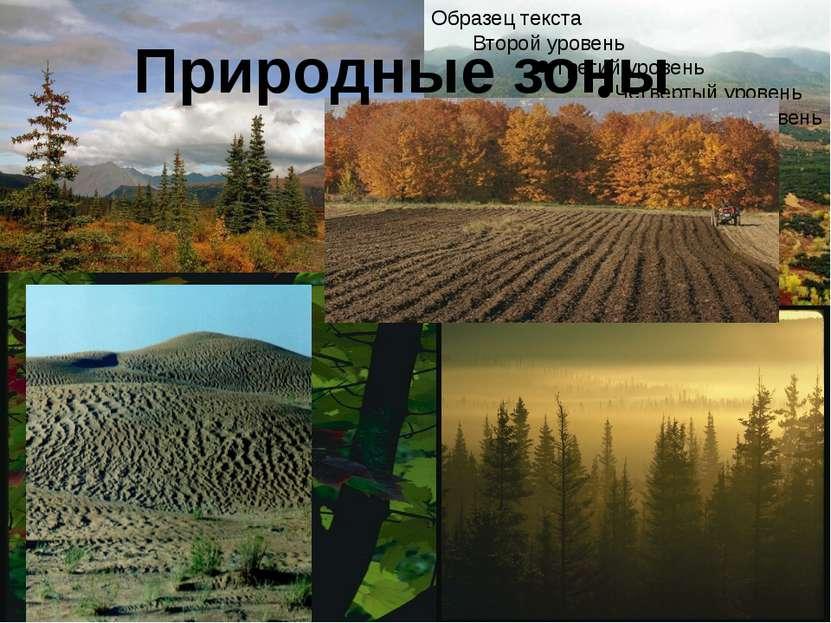 Какое количество р-нов расположено на территории Европейской России? Почему и...