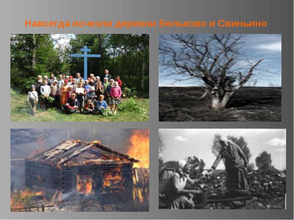 Навсегда исчезли деревни Бельково и Свиньино