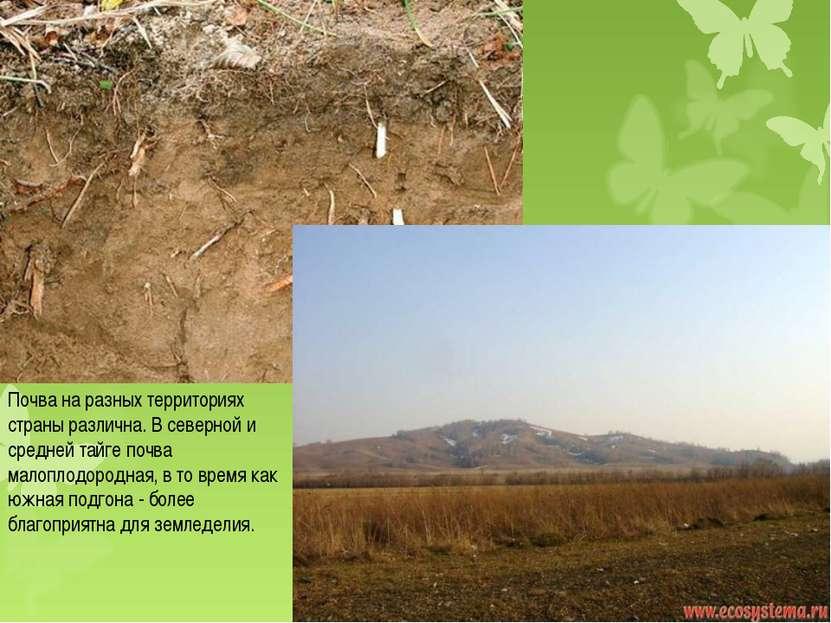 Почва на разных территориях страны различна. В северной и средней тайге почва...