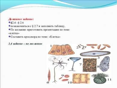 Домашнее задание: §2.4 –§ 2.6 познакомиться с § 2.7 и заполнить таблицу, По ж...