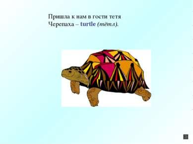 Пришла к нам в гости тетя Черепаха – turtle (тётл).