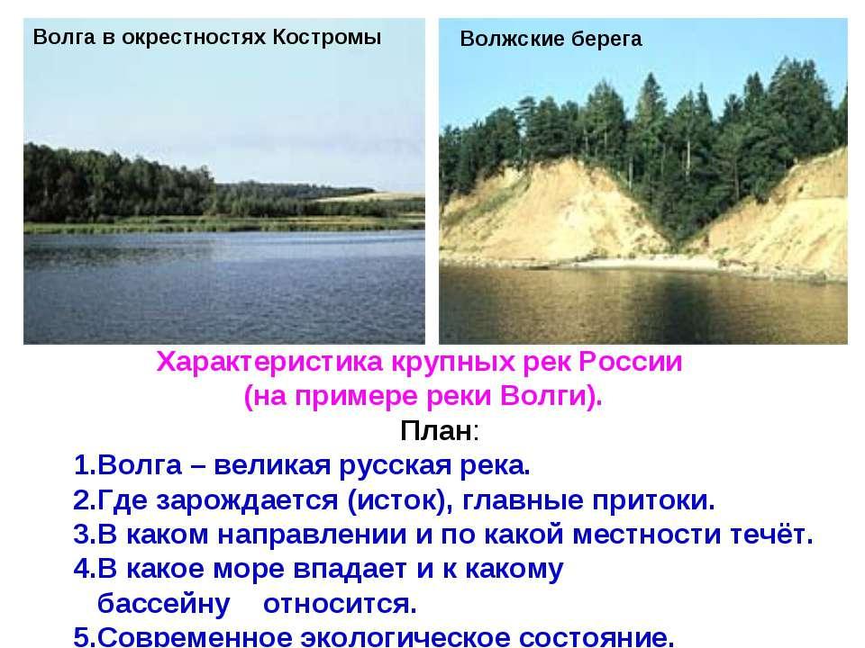 Волга в окрестностях Костромы Волжские берега Характеристика крупных рек Росс...