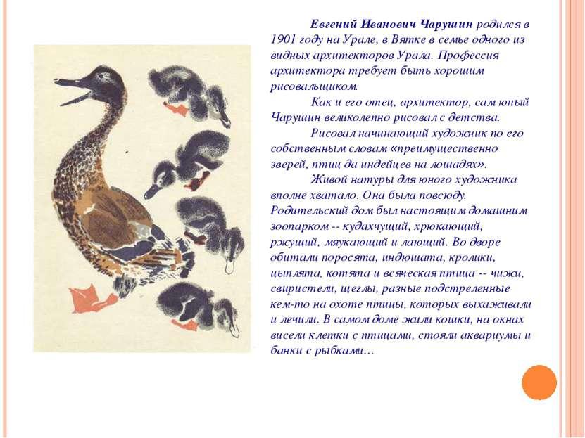 Евгений Иванович Чарушин родился в 1901 году на Урале, в Вятке в семье одного...