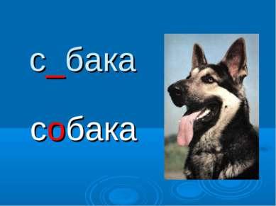 с_бака собака