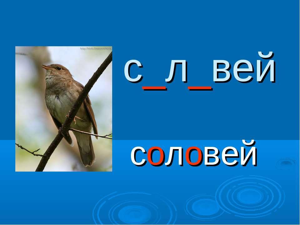 с_л_вей соловей