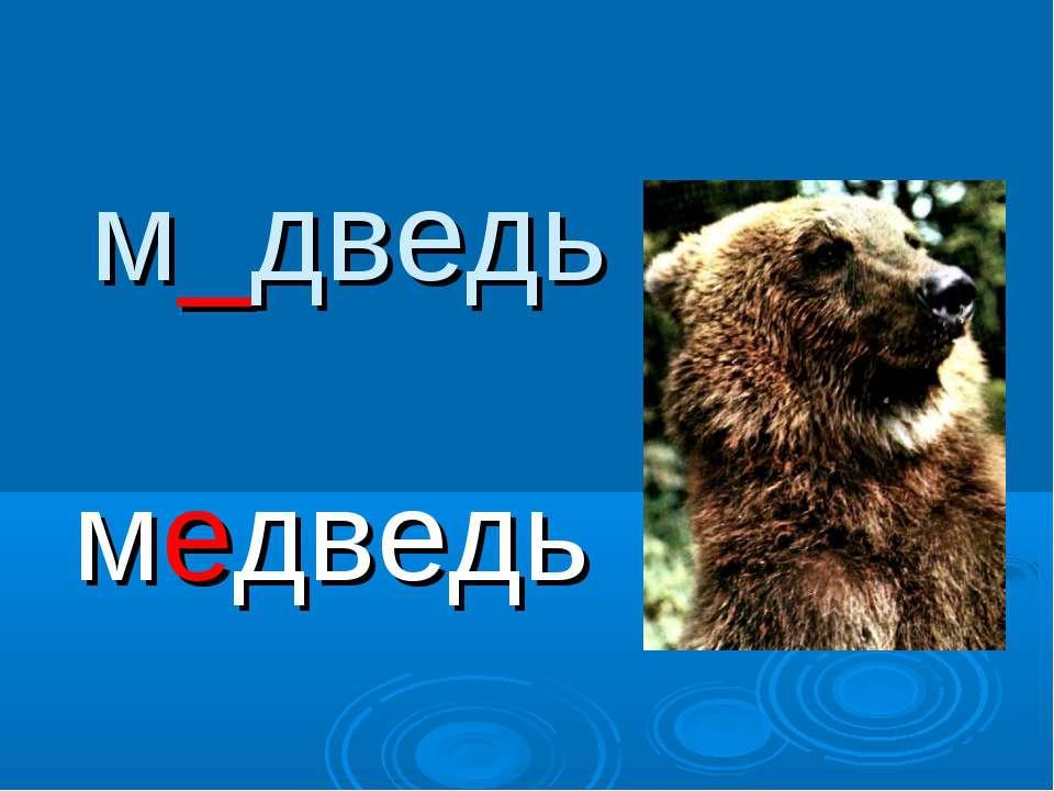 м_дведь медведь