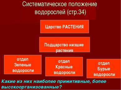 Систематическое положение водорослей (стр.34) Царство РАСТЕНИЯ Подцарство низ...
