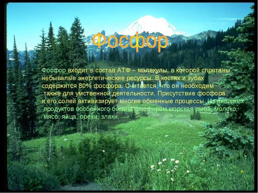 Фосфор входит в состав АТФ – молекулы, в которой спрятаны небывалые энергетич...