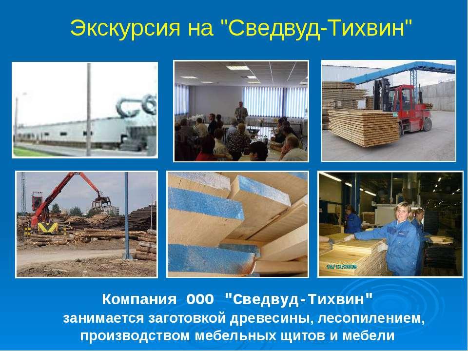 """Компания ООО """"Сведвуд-Тихвин"""" занимается заготовкой древесины, лесопилением, ..."""