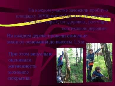 На каждом дереве провели описание мхов от основания до высоты 1,5 м. При этом...