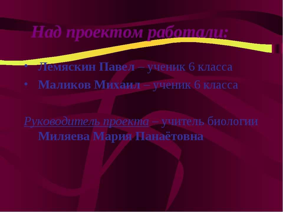 Лемяскин Павел – ученик 6 класса Маликов Михаил – ученик 6 класса Руководител...