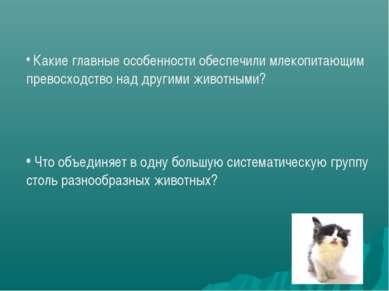 Какие главные особенности обеспечили млекопитающим превосходство над другими ...