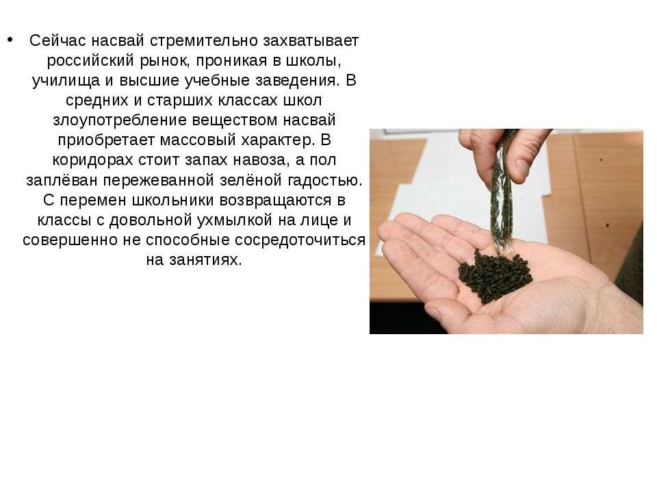 Сейчас насвай стремительно захватывает российский рынок, проникая в школы, уч...