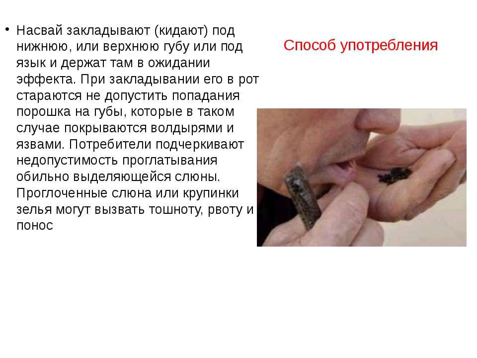 Способ употребления Насвай закладывают (кидают) под нижнюю, или верхнюю губу ...