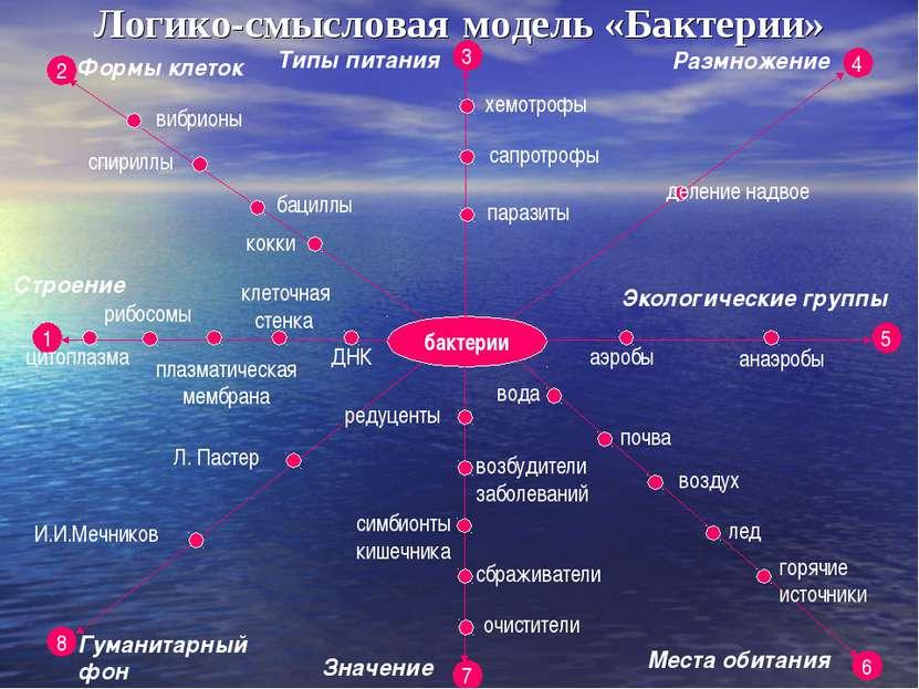 бактерии Логико-смысловая модель «Бактерии» 1 2 8 3 7 5 4 6 Строение Формы кл...