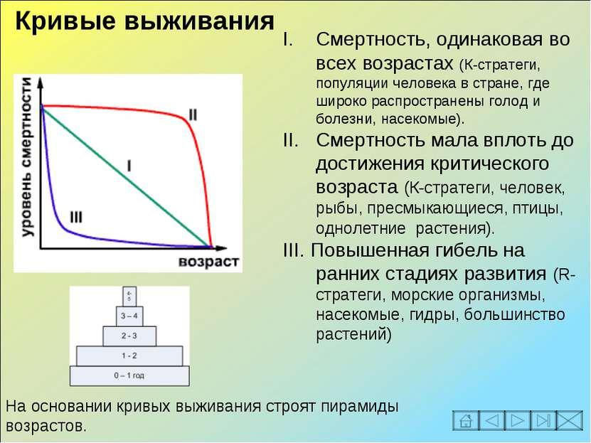 Смертность, одинаковая во всех возрастах (К-стратеги, популяции человека в ст...