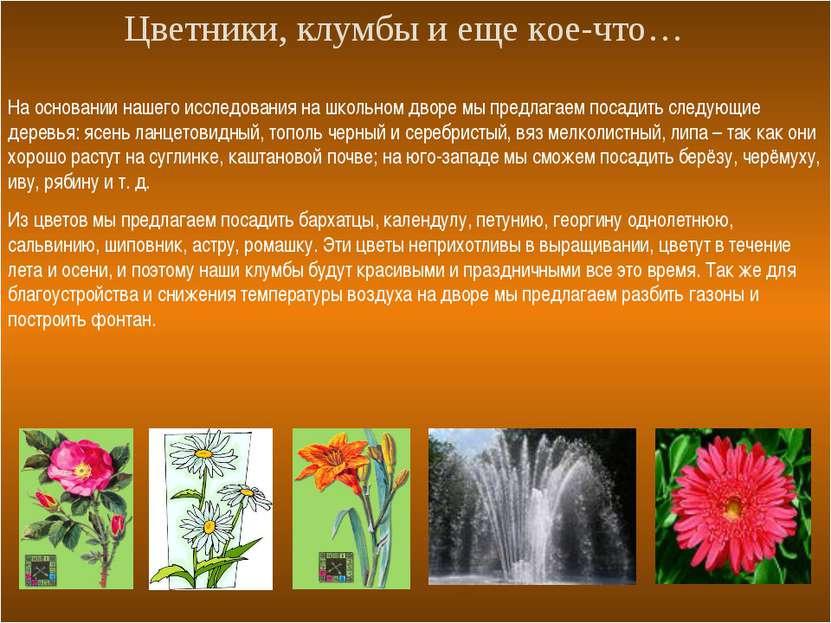Цветники, клумбы и еще кое-что… На основании нашего исследования на школьном ...