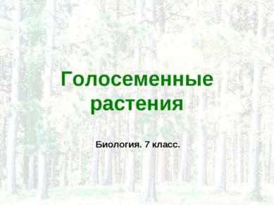 Голосеменные растения Биология. 7 класс.