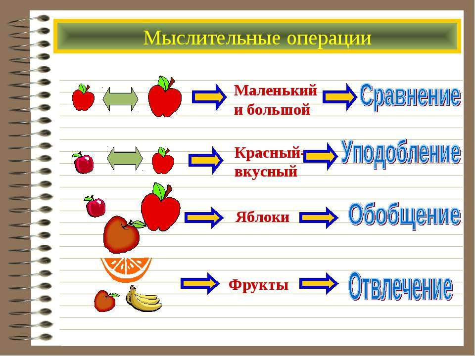 Мыслительные операции Маленький и большой Красный- вкусный Фрукты Яблоки