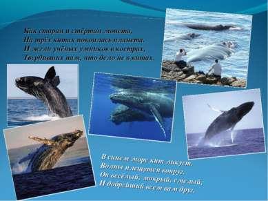 В синем море кит ликует. Волны плещутся вокруг. Он весёлый, мокрый, смелый, И...